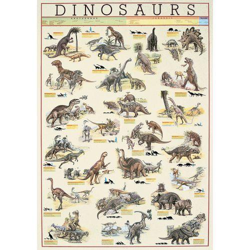 Dinosaurs Plakat m. info - 60 x 90 cm