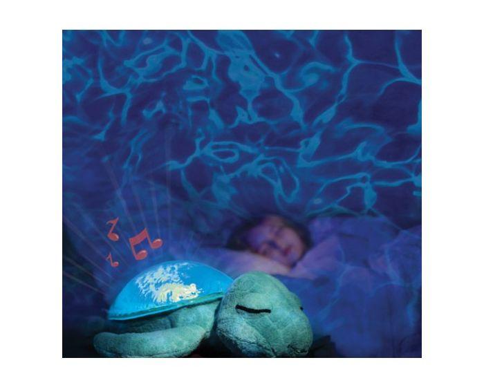 Cloud b Tranquil Turtle - Ocean
